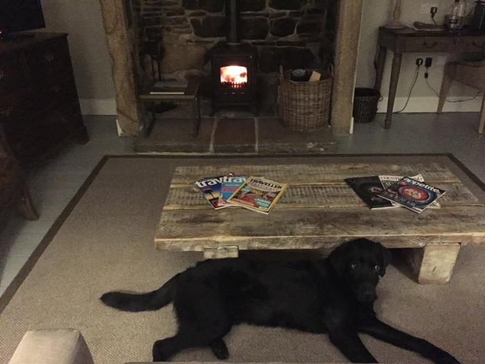Lord Crewe Arms - Log Fire